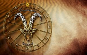 virgo capricorn