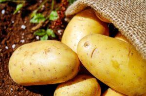 mimpi melihat banyak kentang