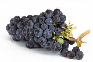 arti mimpi anggur