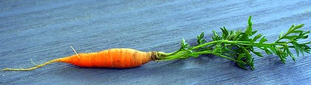 mimpi beli wortel