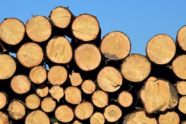 mimpi kayu