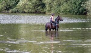 mimpi menunggang kuda