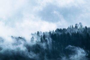 mimpi kabut