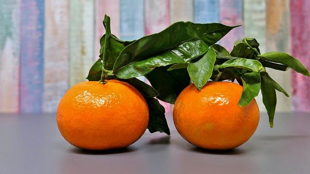 mimpi jeruk keprok