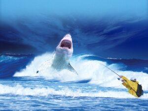 Arti Mimpi Ikan Hiu Menggigit 1 Arti Mimpi