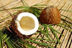 tafsir kelapa busuk